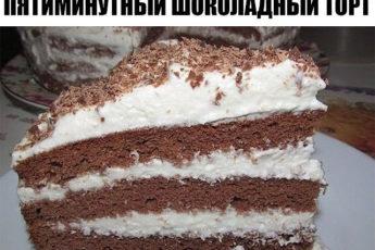 Пятиминутный шоколадный торт